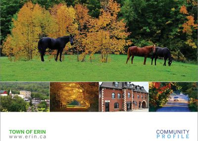 Town of Erin Community Profile